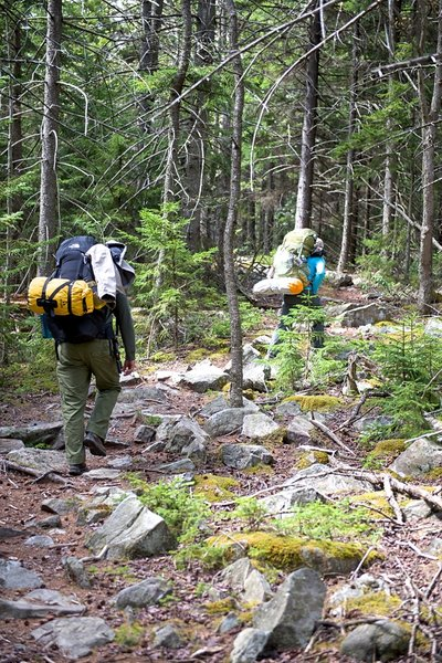 Raven Ridge Trail