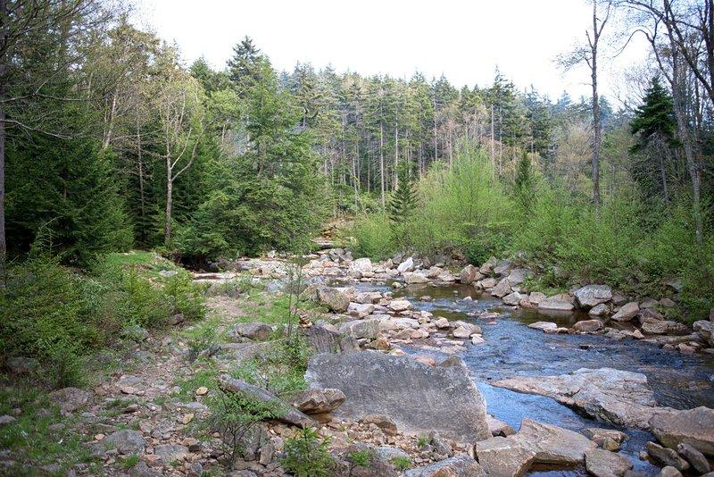 Left Fork Red Creek Trail