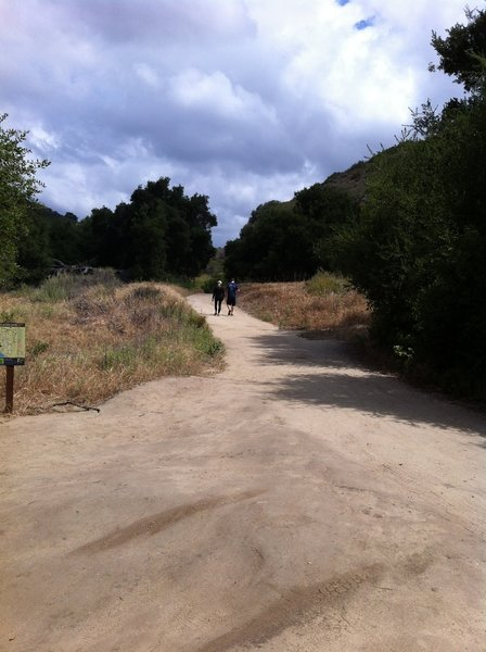 Wood Canyon Trail