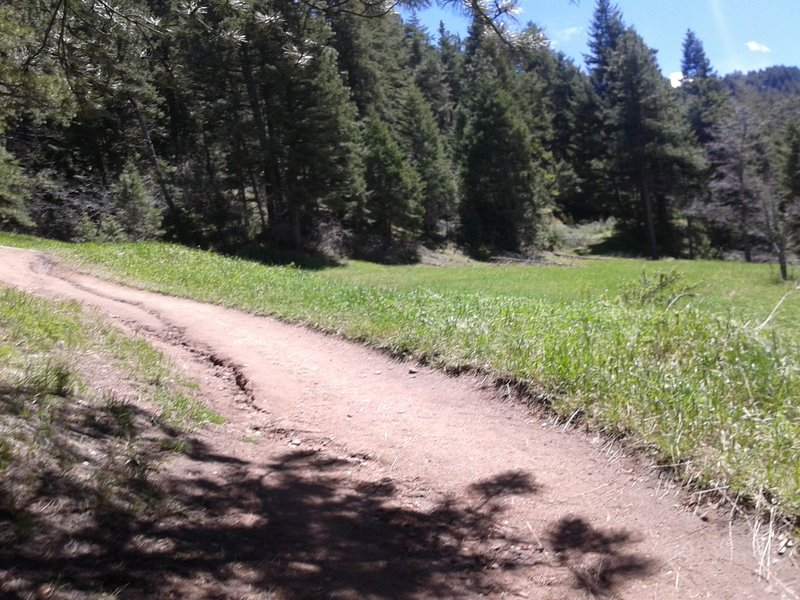 A small clearing off off the trail