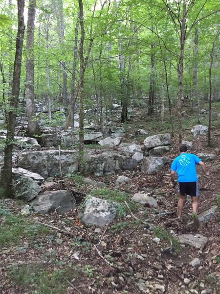 Rock filled start to the Red Lizard Trail