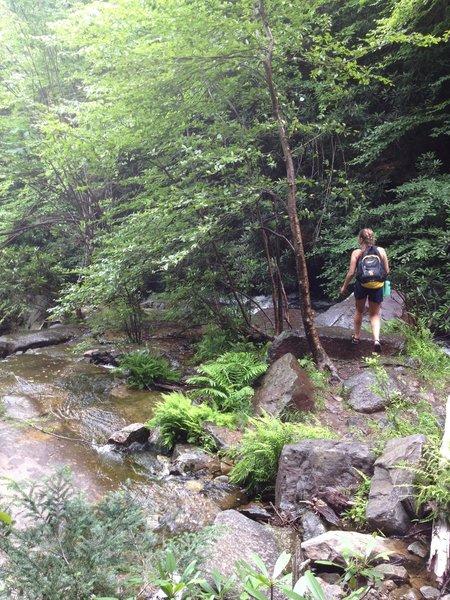 Following the Glen Onoko Trail up