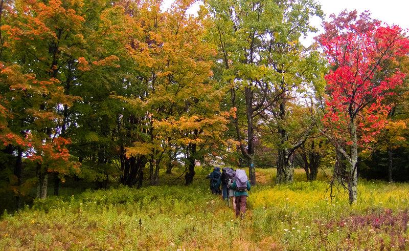 Hiking uphill on the Raven Ridge Trail