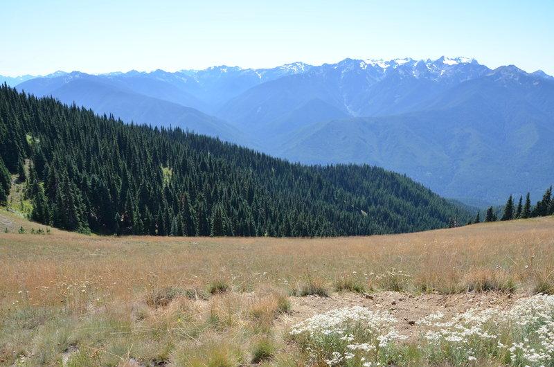 Meadow views across huge valleys