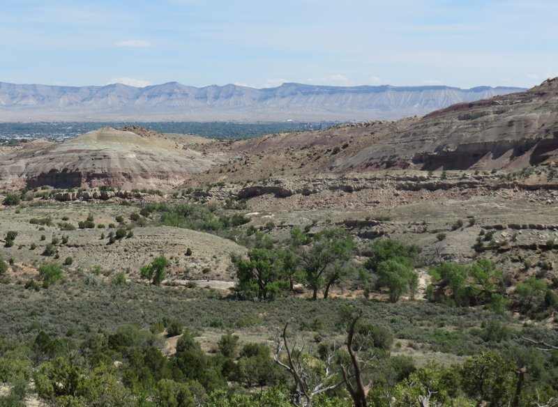 A great view across the Grand Junction valley to the Bookcliff Mountains.