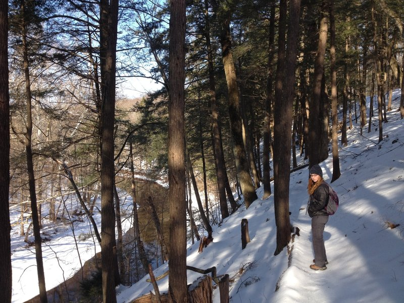 Up above the skippack