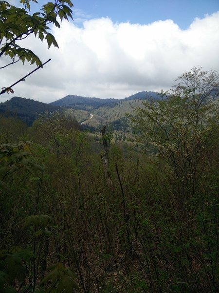 View of the valley from a meadow.