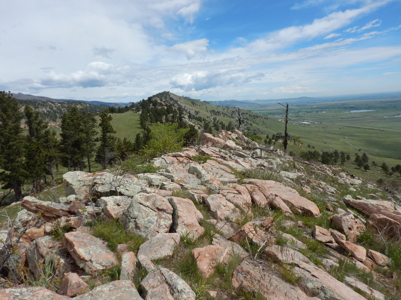 Atop the rocky hogback looking north
