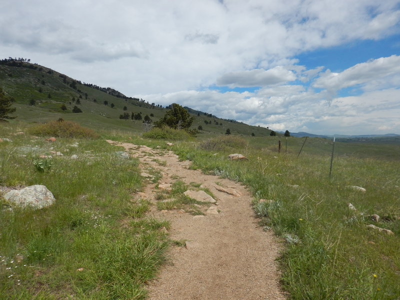 The wide and spacious Foothills North Trail