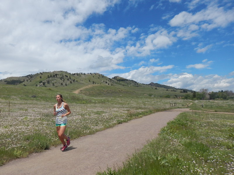 Running through fields of wildflowers on the Foothills South Trail