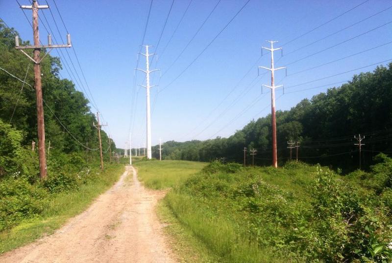 Power line crossing on the Cabin John Trail