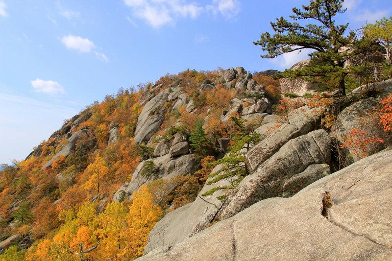 Old Rag rocks in Autumn.