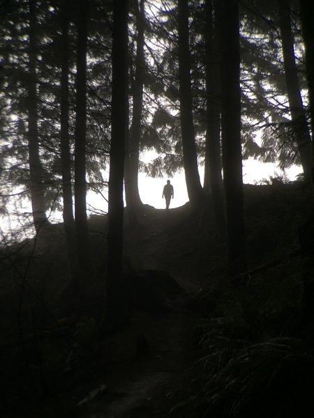 Cresting the last ascent