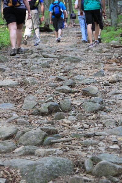 Path of Ridge Trail