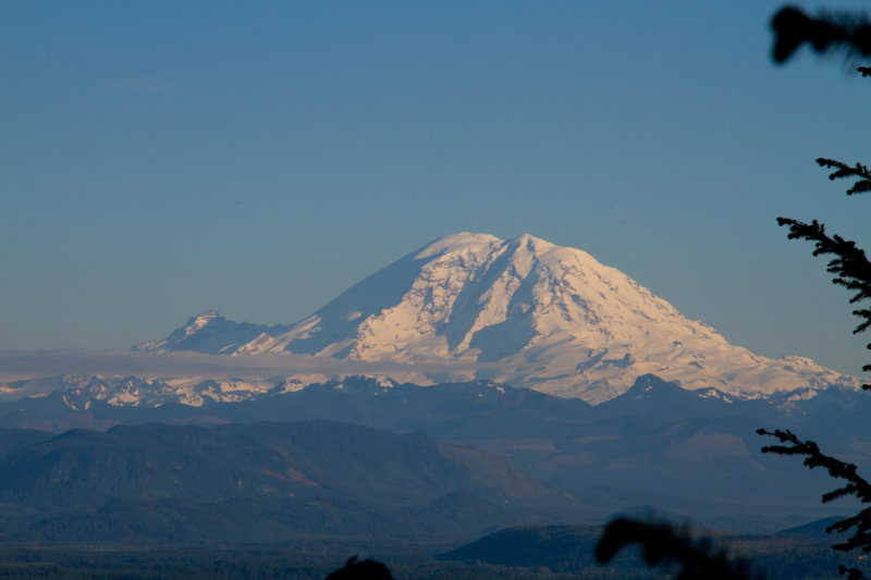 Mt. Rainier seen from Tiger Mountain