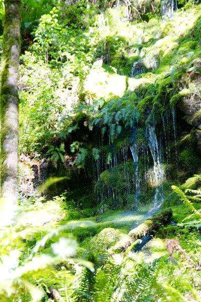 Chirico Trail: Waterfalls