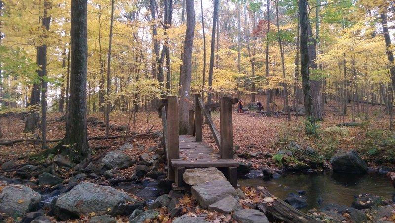 Bridge by the pond.
