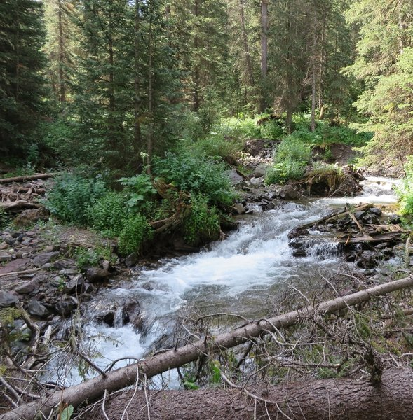 Wilson Creek tumbling down from Blaine Basin. The trail crosses this creek several times. Look for sturdy multiple log bridges