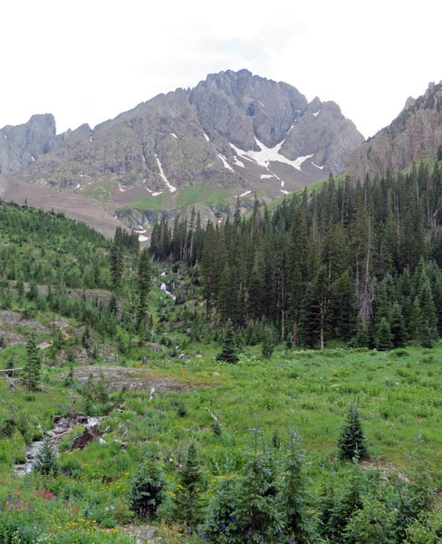 Blaine Basin carpeted with wildflowers and surrounded by high rocky mountains.