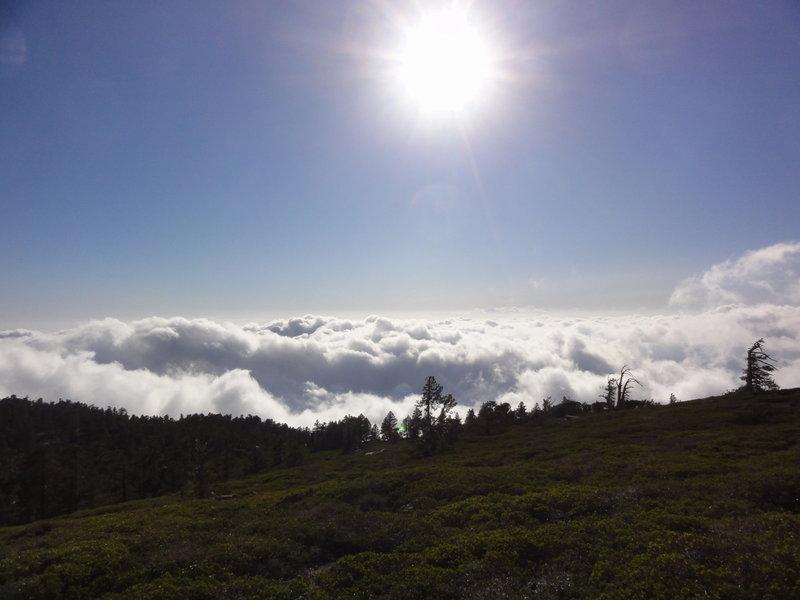 View from San Bernadino Trail
