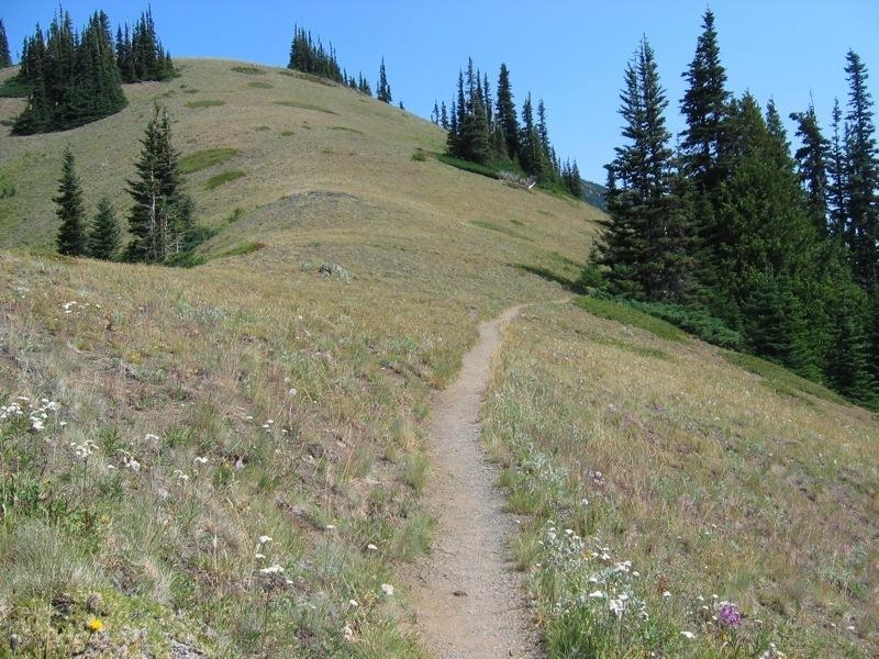 Beginning of the Klahhane Ridge - by Nicholas Shipes