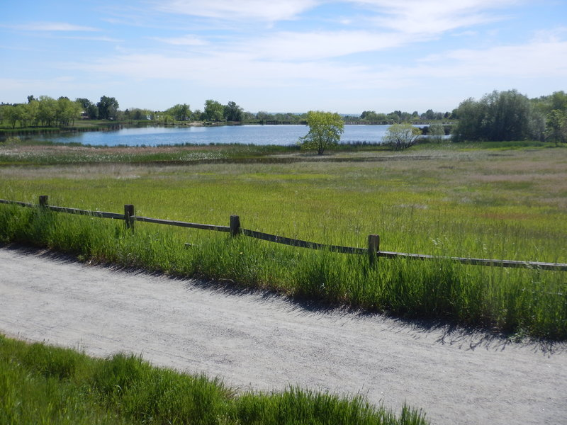 The marshy west side of Wonderland Lake