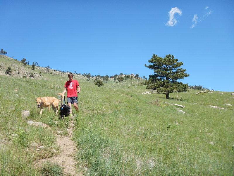 Descending the Wonderland Hill Glider Trail