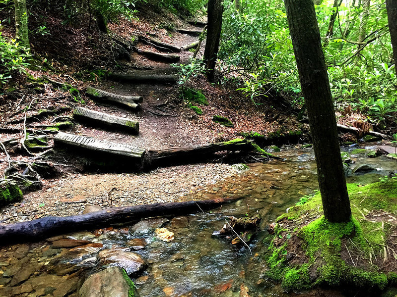 One of the many creek crossings along the Green Knob Trail.