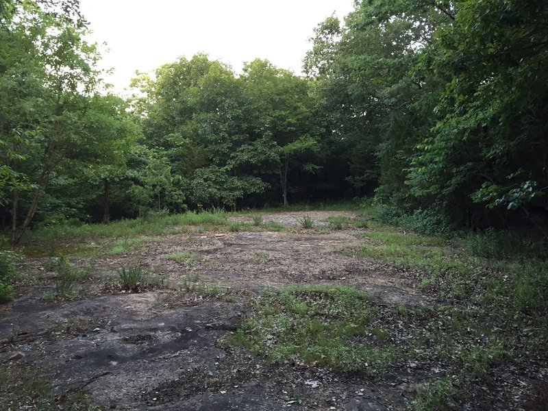 Open area near Old Wagon Road and Discovery Trail