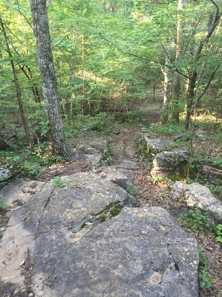 Rock section of the Warpath Ridge Trail