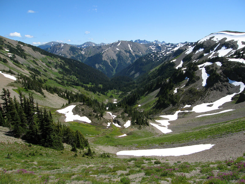 View down into Badger Valley from the Obstruction Point - Deer Park trail.  (photo by pfly)