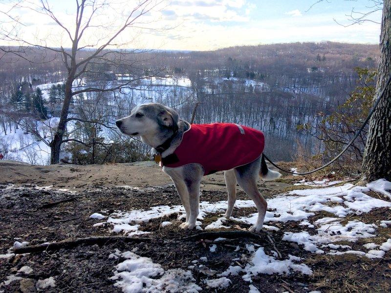 At Raven Rocks overlook in winter.