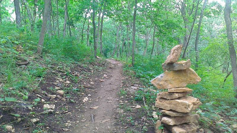 Singletrack on Red Trail