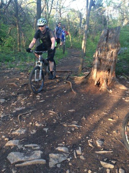 Orange Trail / Violet Trail Intersection