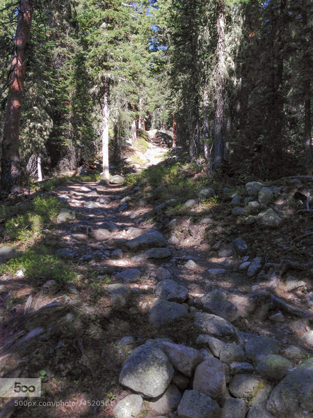 This is a pretty rocky trail...