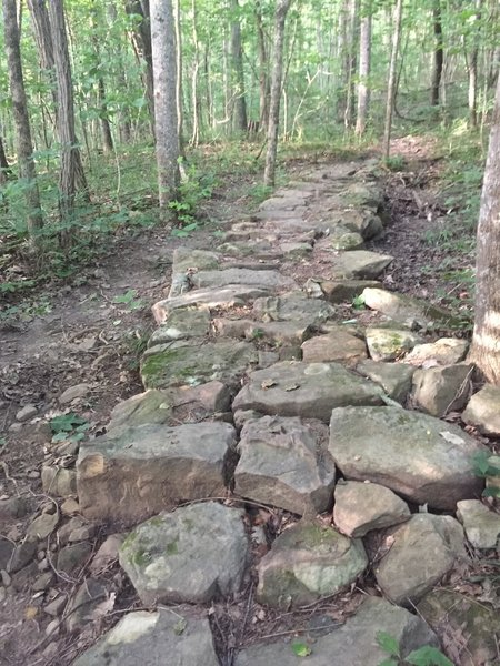 One of a few stone sections on the Goat Trial