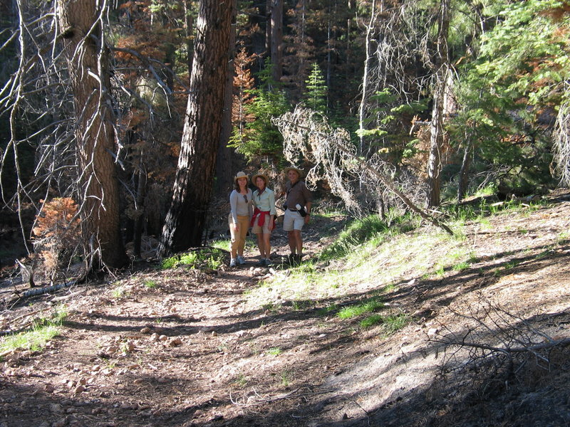 On the Uncle Jim Trail, North Rim of the Grand Canyon.  (Photo by Bryan Dougherty)