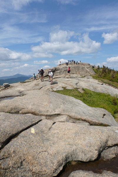 I think it's a popular hike!