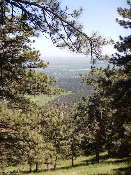 One last view through the trees from the Plains Overlook Trail