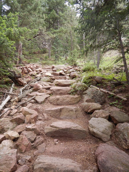 The Saddle Rock Trail has a lot of nicely built stairs