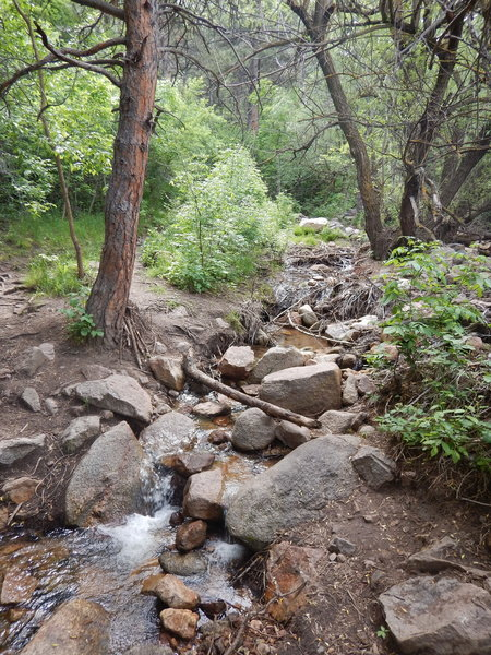 Hop across rocks here to cross the stream.  There is a lot of flood debris scattered around here.