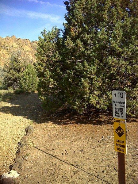 Trail breaks left. Steep rough terrain.