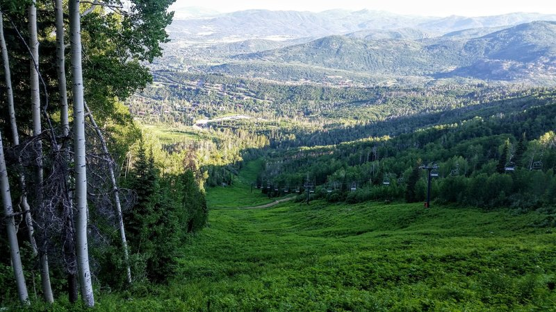 The trail weaves in and out of the canopy and on the switchback, peeks out for this clear view of the valley below.