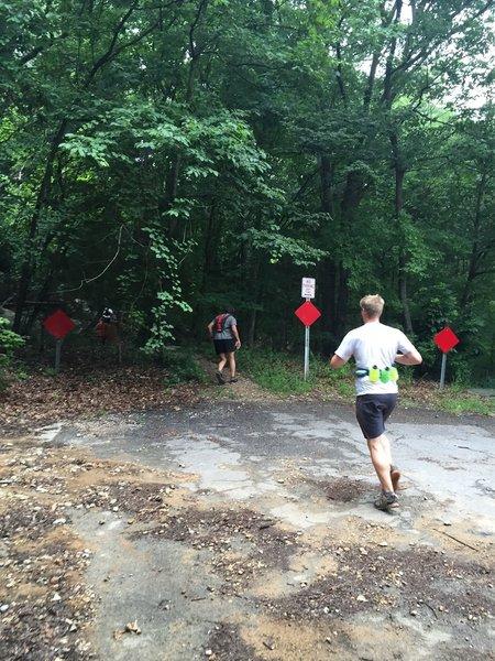 Runners entering Sugar Tree Trail