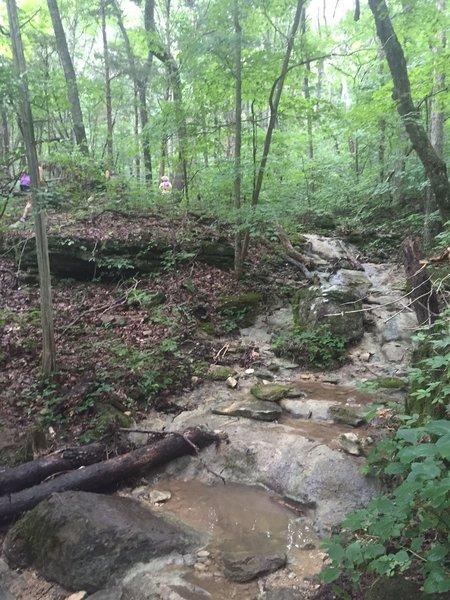 Creek Crossing on Smoke Rise Trail