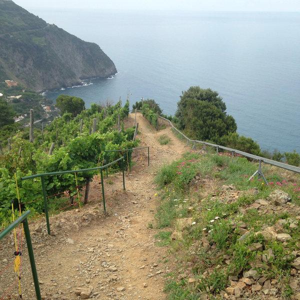 View on the climb to Corniolo Hill
