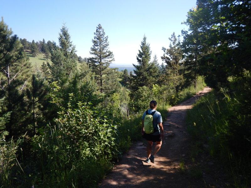 The rolling McClinttock Trail affords brief views