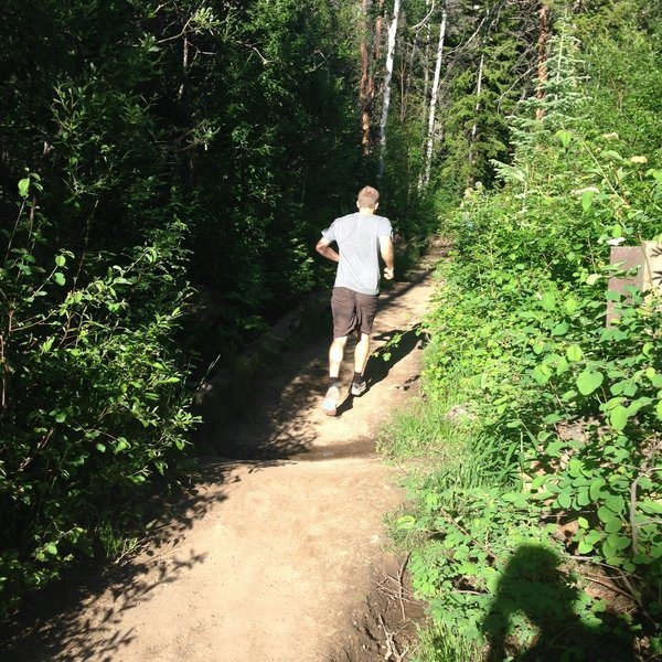 Taking off on the climb above Lower Fish Creek Falls