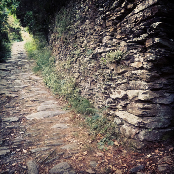 A dry stone wall along the old mule path from Riomaggiore to Montenero