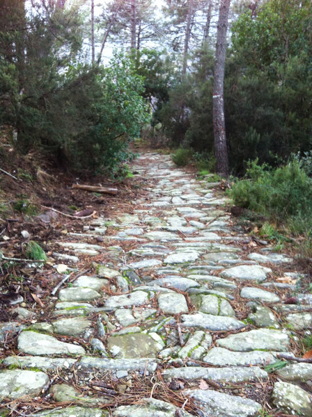 Old mule path to Soviore